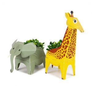 Create your own Jungle Plant Pals | Clockwork Soldier | Unique Gifts | Oscar & B | UK